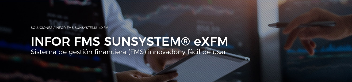 Soluciones Infor FMS Sunsystem ctn global